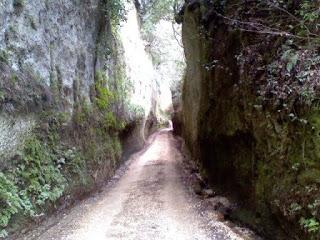 Gli etruschi le vie cave ed il cavone a sovana