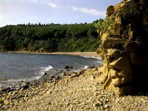 Mare Toscana. Le spiagge del Golfo di Follonica, dal Puntone a Puntala.