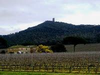 Torre-di-donoratico-2010