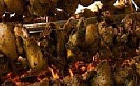 sagra-del-galletto-camigliano-1