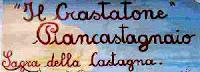 crastatone-festa-della-castagna-piancastagnaio-01-2010