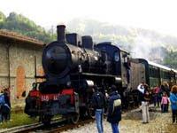 sagra-delle-castagne-a-marradi02-2010