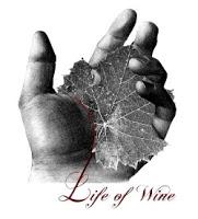 Life-of-wine-viaggio-nelle-eta-del-vino-2010