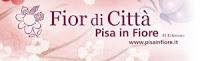 Pisa In Fiore Edizione 2011