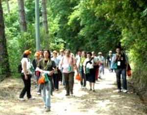 i partecipanti