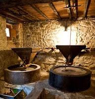 museo_castagna_raggiolo-01-2011