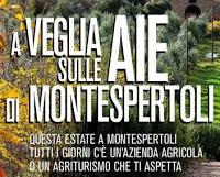 montespertoli 2012 01