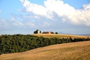 campi via francigena