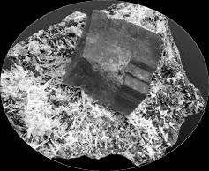 Mostra Di Cristalli Al Museo Della Specola Di Firenze. Mostra Di Minerali Fino A Giugno 2013
