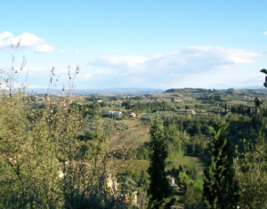 Vista San Miniato Foto Panoramica