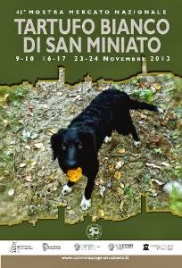Tartufo Bianco 2013 San Miniato Mostra Mercato Foto 1