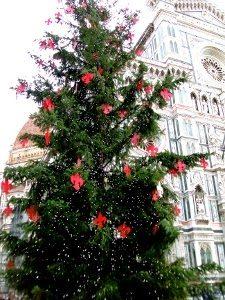 Natale Firenze 2014