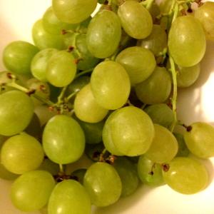 Feste Dell'Uva E Del Vino In Toscana Nel Mese Di Settembre