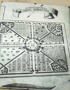 giardino semplici 2