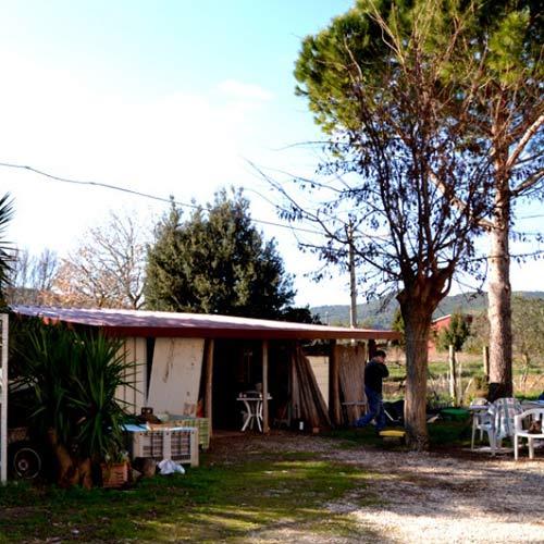 2016-02-25-Vivere-la-Toscana-Bartoli-azie
