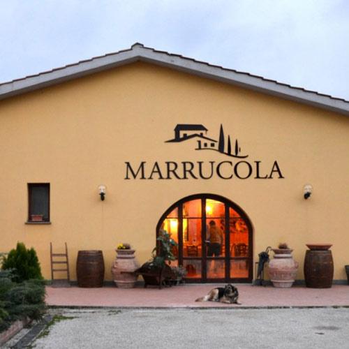 Marrucola
