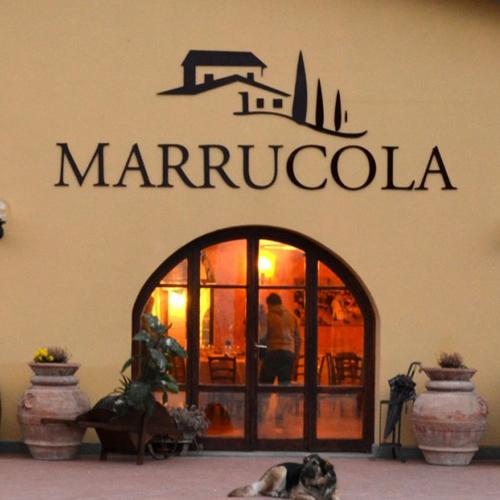 Marrucola_azienda