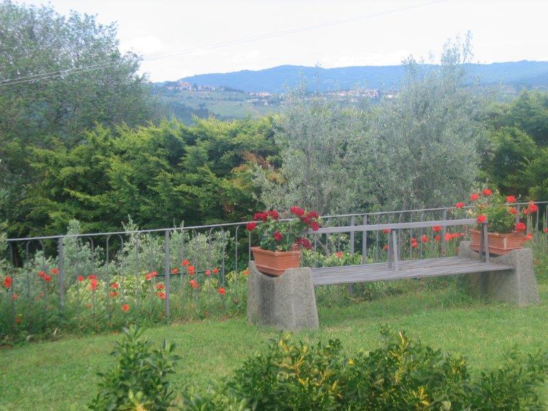 Panzano In Chianti. Foto Di Silvia Rogai