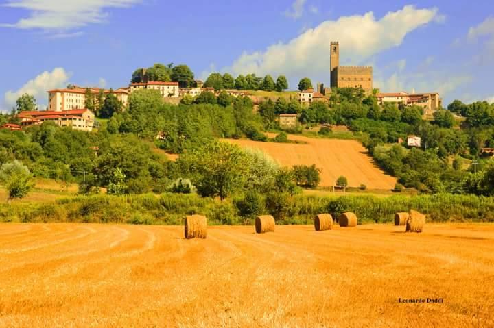 Poppi, In Provincia Di Arezzo. Di Leonardo Daddi