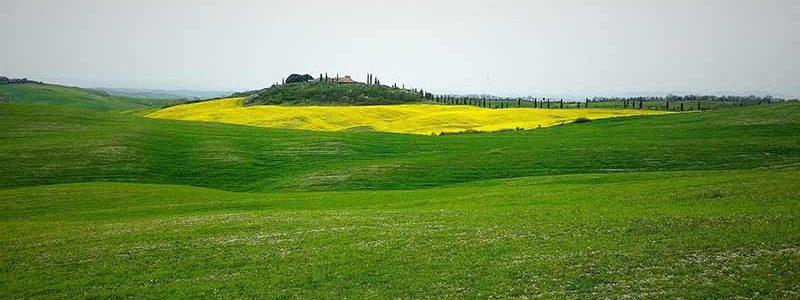 Colline Toscane In Provincia Di Siena. Di Simone Cicalini