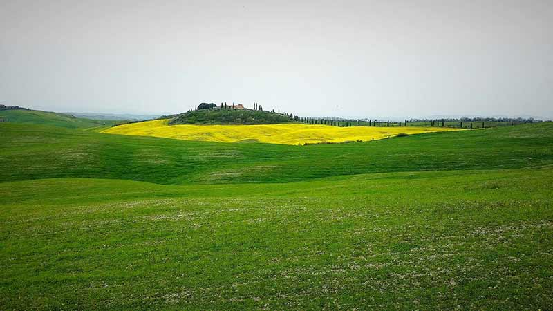 Simone Cicalini Provincia Di Siena