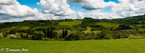 Colline Intorno A Montespertoli, Foto Di Tommaso Nesi