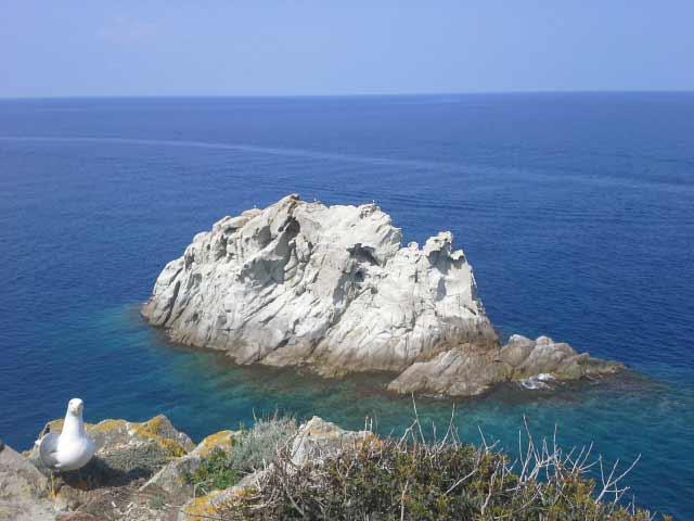 Isola D'Elba. Enfola. Scoglio Della Nave