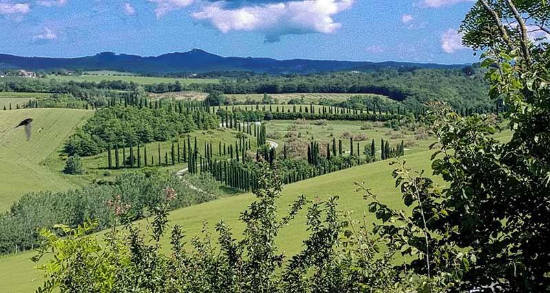 Castelnuovo Berardenga Di Andrea Parlascino