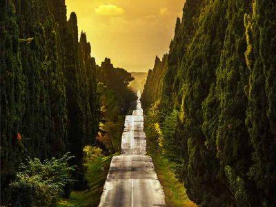 Bolgheri, Piccolo E Prezioso Borgo