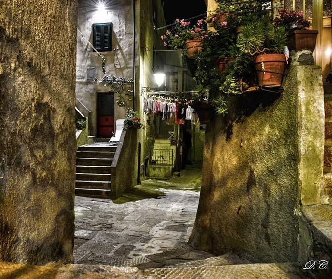 Giglio Castello Di Davide Ciarli