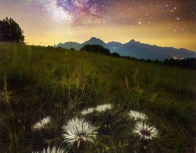Scorcio Campestre Con Cielo Stellato In Toscana, Foto Di Leonardo Papera