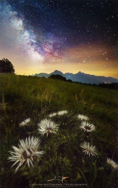 Toscana-sistema-solare-di-leonardo-papera