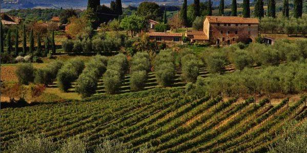 Castelnuovo Di Berardenga, Siena