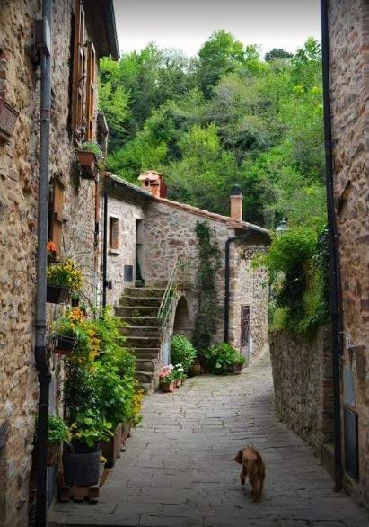 Scopri l'antico borgo medievale di Castelnuovo Val di Cecina