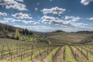 Scopri il paesaggio mozzafiato del Chianti!
